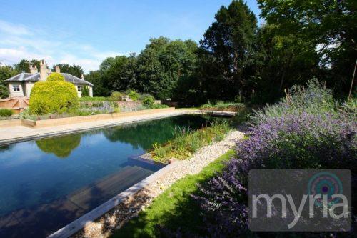Long, lap swimming natural pool