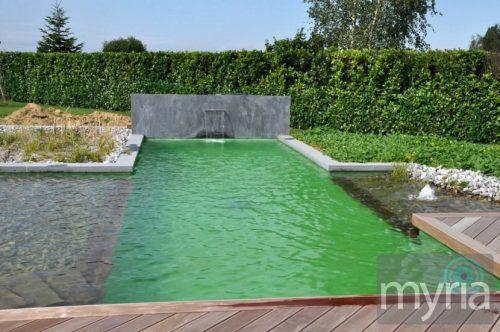 Beautiful modernist natural pool