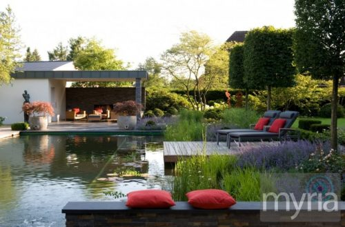 Natural swimming pool with plant terracing