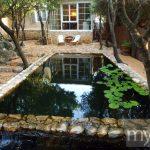 Peaceful pool in small backyard