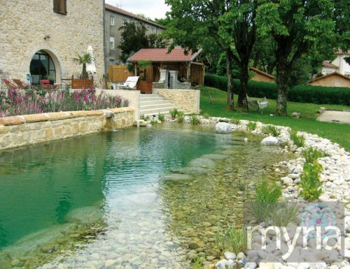Natural swimming pool in the backyard of a villa